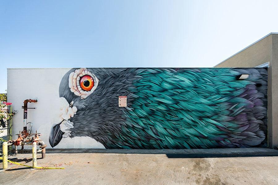 Œuvre murale inspirée des plumes de pigeon par Adele Renault