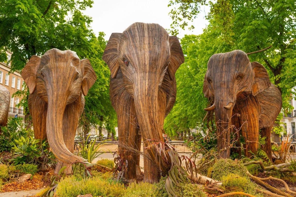 Coexistence Elephant Art Exhibit