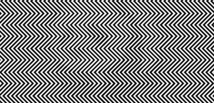 Optical Illusion Panda by Ilja Klemencov