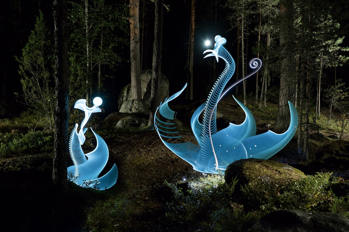 Light Painting of Swans in the Forest by Hannu Huhtamo