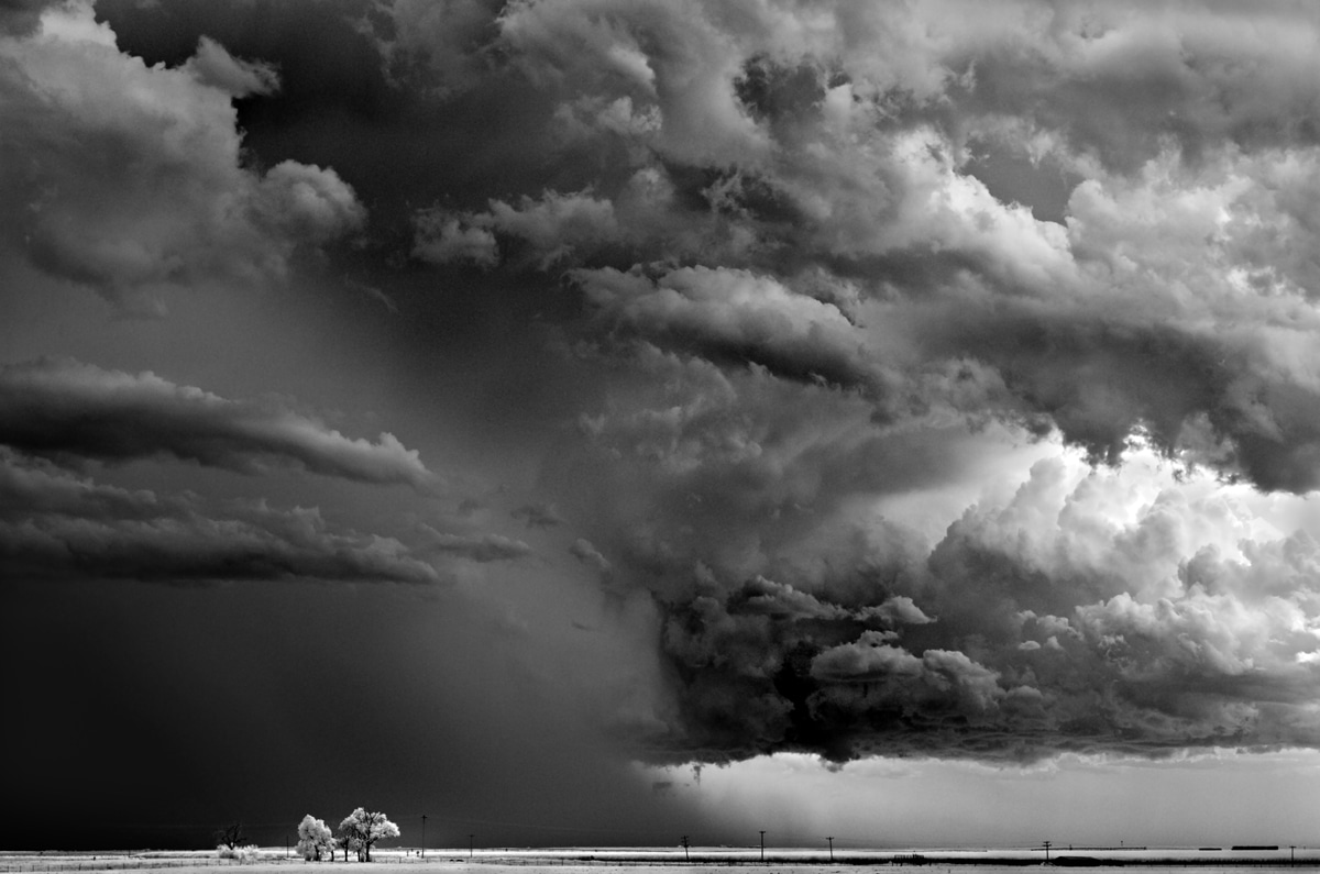 Tree Clouds by Mitch Dobrowner