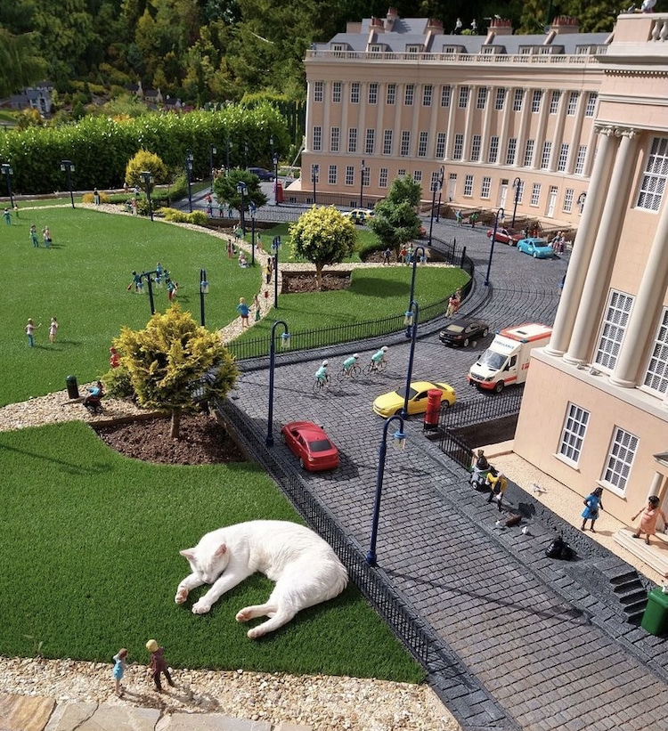 Babbacombe Model Village With Animals