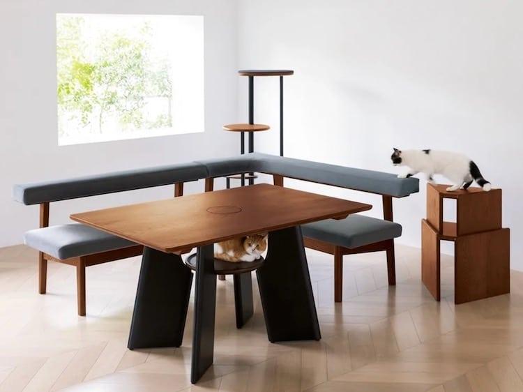 mesa de diseño para gatos por Dinos