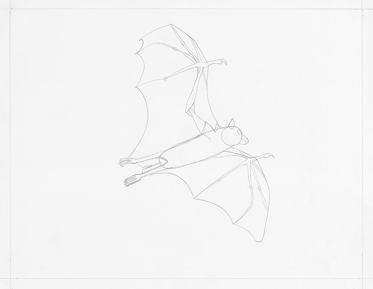 How to Draw a Bat Step by Step