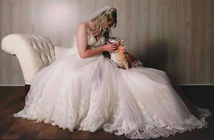Kardi the French Bulldog and Her Human Kelsey in Her Wedding