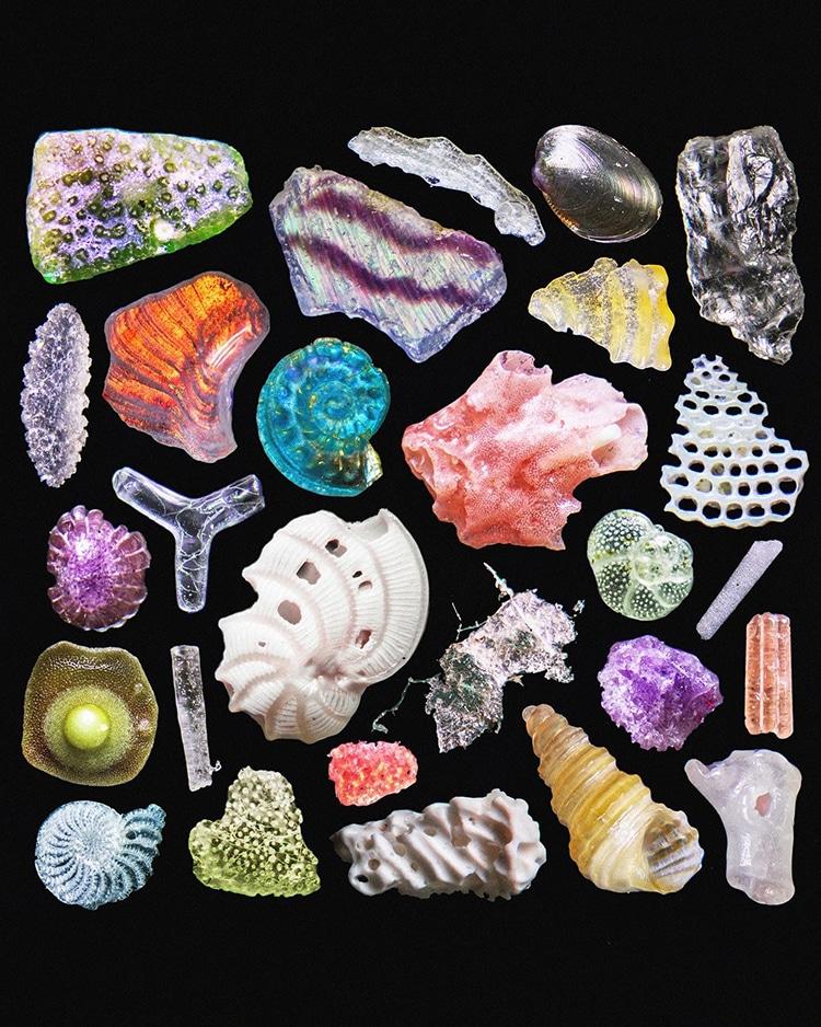 Beach Sand Under a Microscope