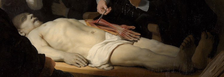 Anatomy Lesson Painting by Rembrandt