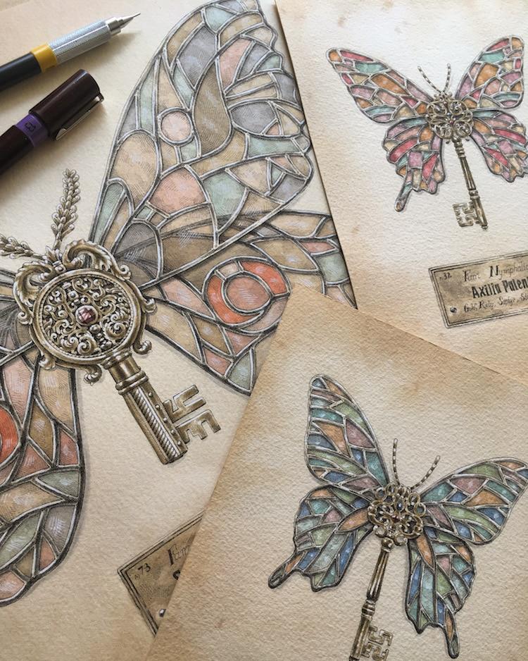 Nymphalidae Drawings by Steeven Salvat