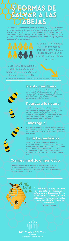 Infografía sobre cómo salvar a las abejas