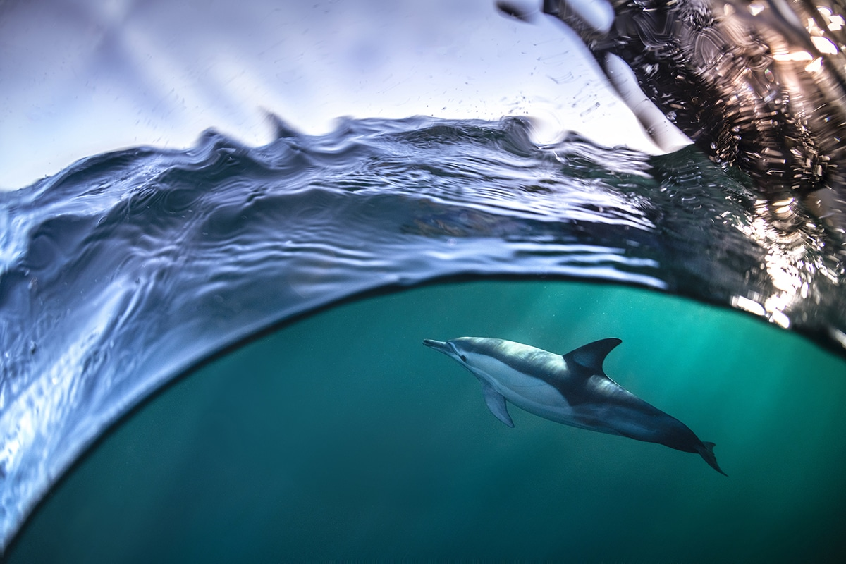 Gergo Rugli Ocean Photography