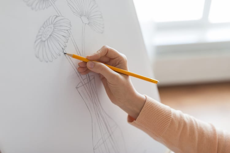 How to Draw Plants and Nature Books