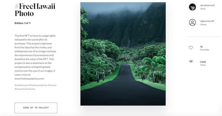 Hawaii Road Photograph