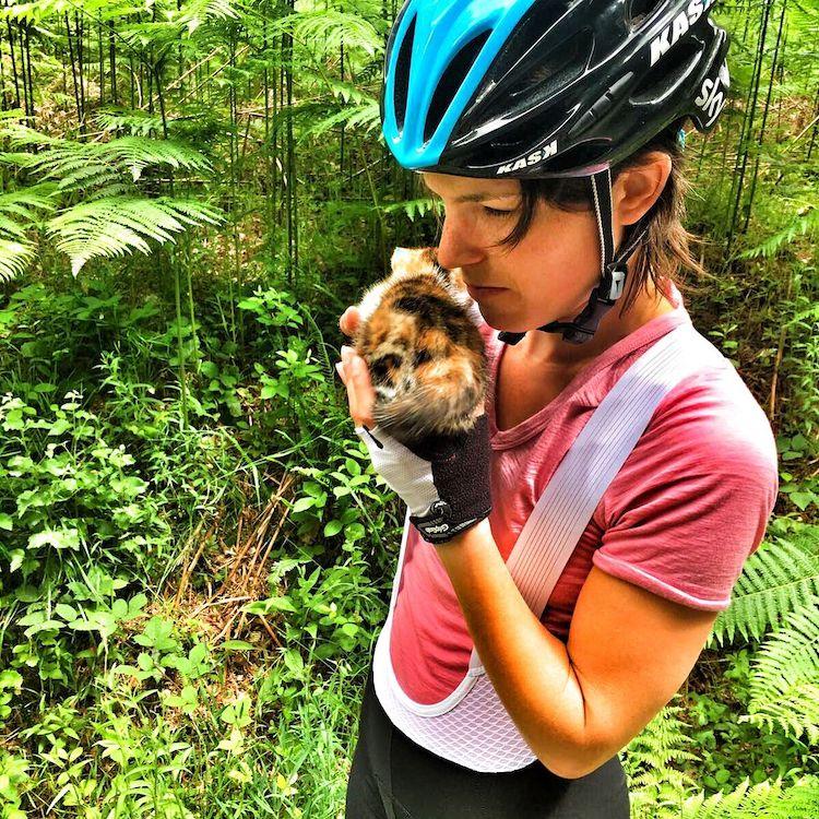 Chaton trouvé seul dans la forêt adopté par les cyclistes
