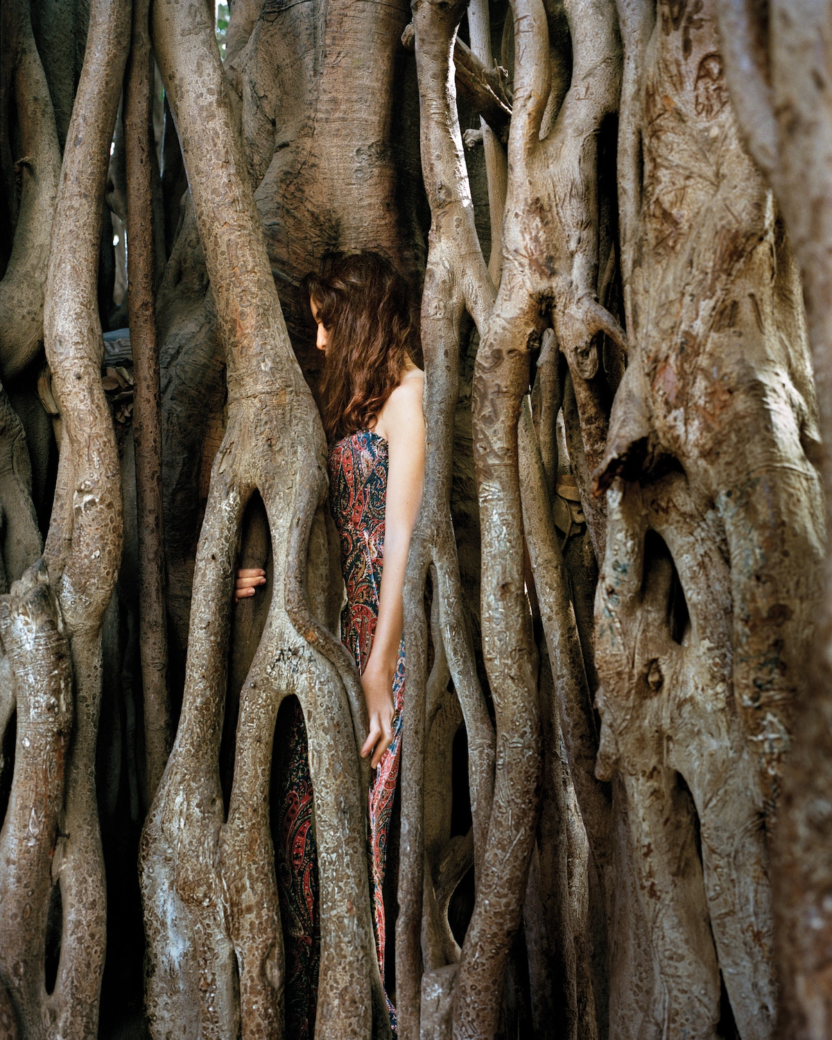 Young Woman Immersed in Trees
