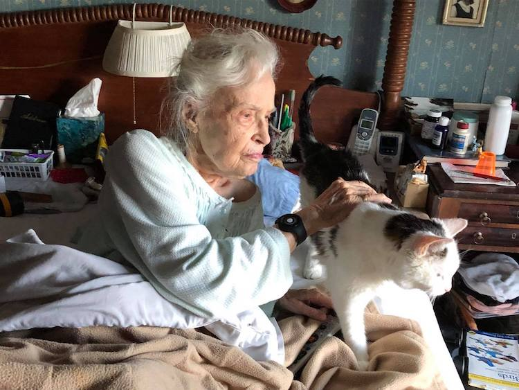 101-Year-Old Woman Adopts Oldest Cat in Shelter