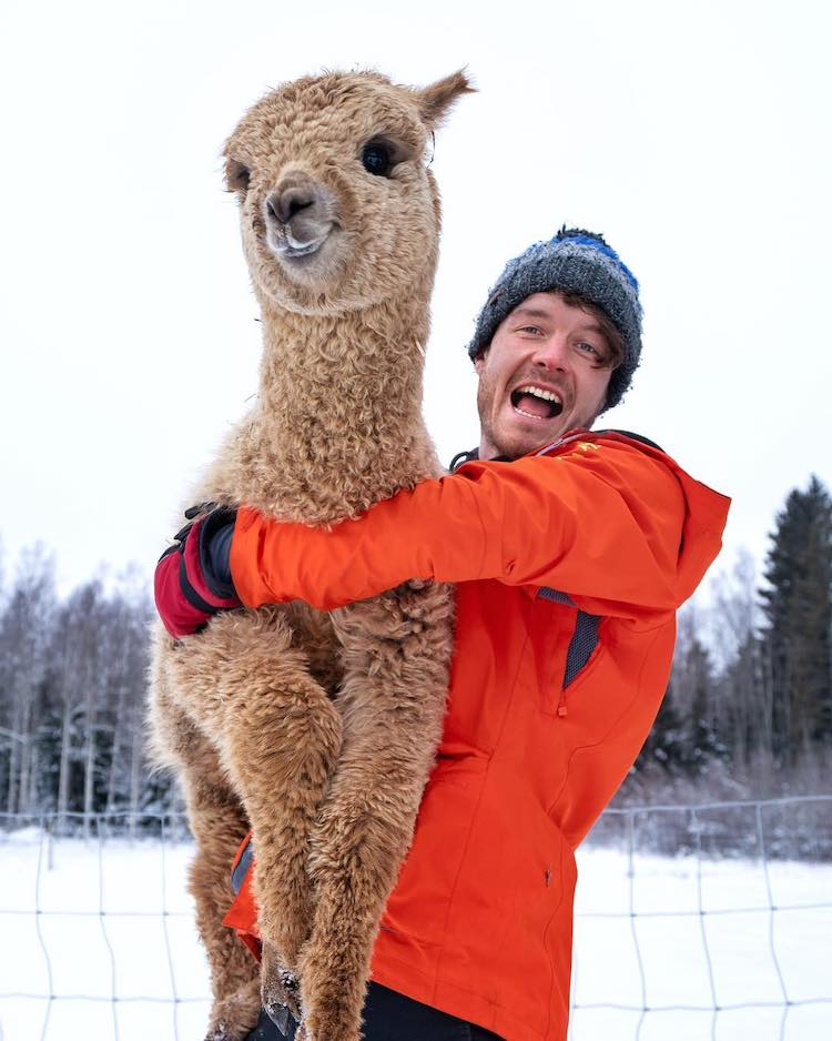 Allan Dixon Animal Selfie