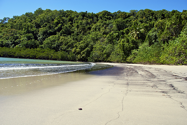 Daintree is returned to aboriginal owners