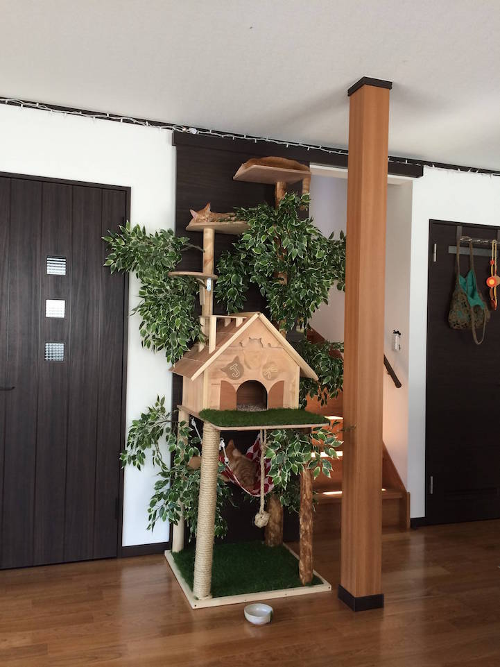 Diy cat tree offers alternative to conventional scratching for Homemade cat post