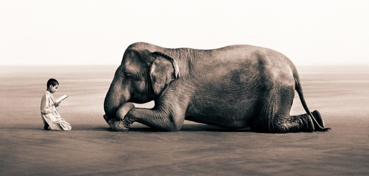 blurring the lines between animals and mankind