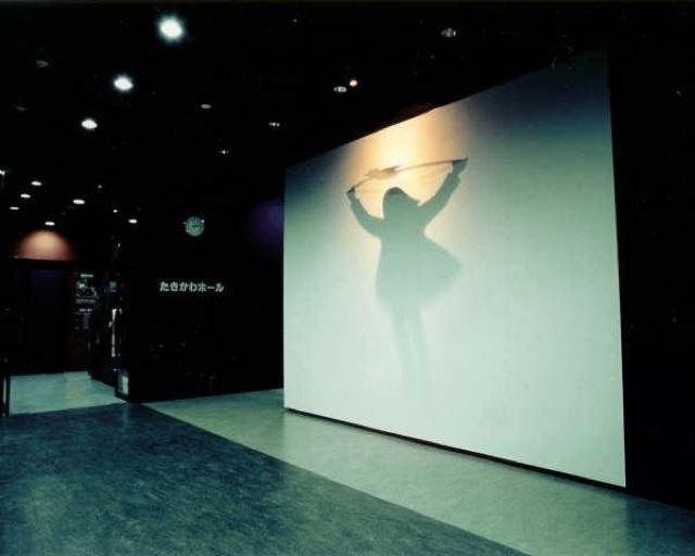 Mysterious Shadow People By Kumi Yamashita
