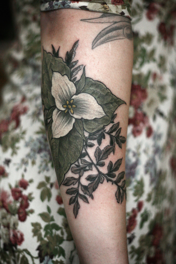 exquisitely beautiful botanical tattoos by alice carrier. Black Bedroom Furniture Sets. Home Design Ideas