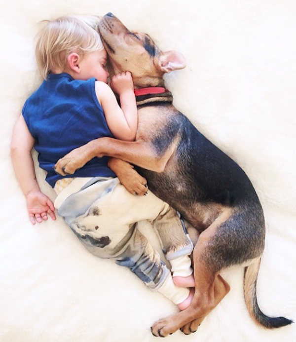 Month Update On The Toddler Who Takes Naps With His Puppy - Toddler naps with puppy