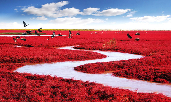 44 colorful landscapes highlighting the unbelievably natural beauty