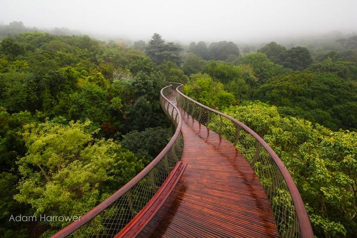 5AWEWWp-pUGWytxiBZBa_Kirstenbosch1.jpg