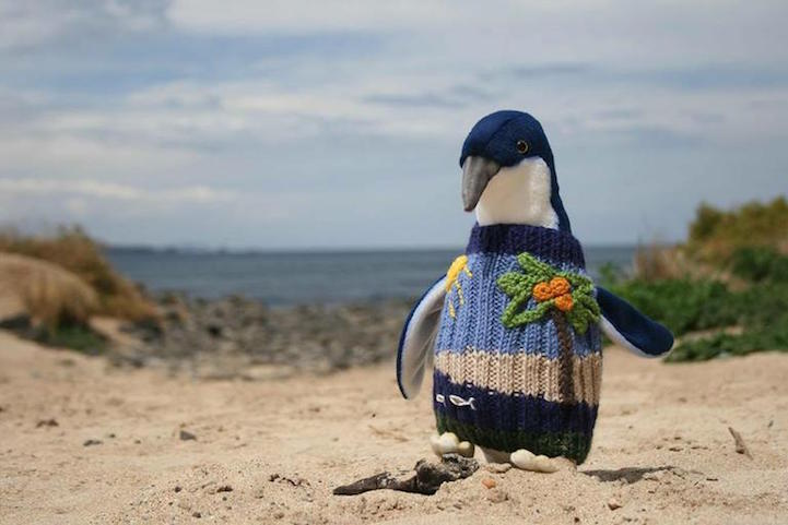 Australia's Oldest Man Knits Adorable Sweaters to Save Oil-Covered ...