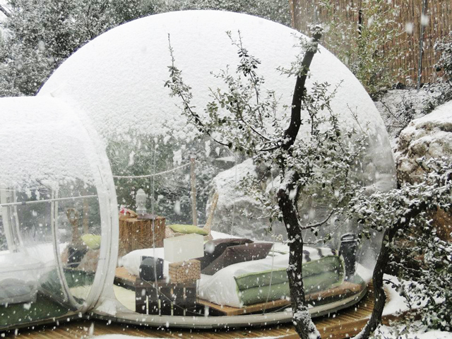 8921f5daa5c Bubble tents are now available to purchase on Amazon, whether you want a  single-tunnel tent or a double-tunnel pod.