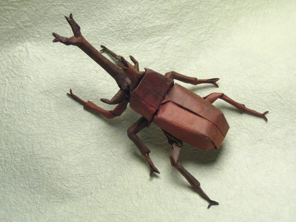Extraordinary Insect Origami