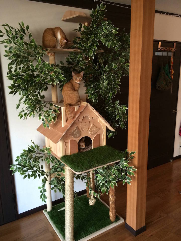 diy cat tree offers alternative to conventional scratching posts and beds. Black Bedroom Furniture Sets. Home Design Ideas