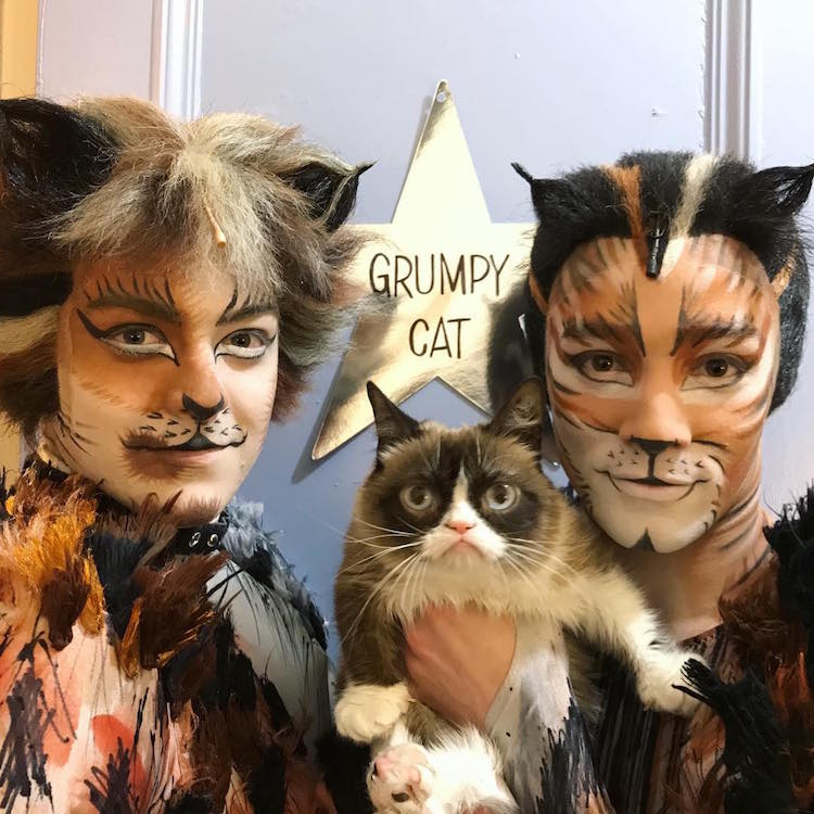 Grumpy Cat Joins the Broadway Musical \u201cCats\u201d for a Purrfect