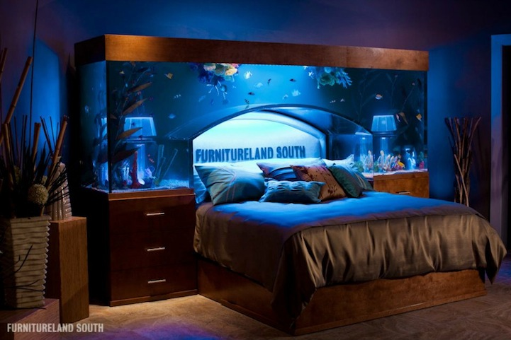 Aquarium Bed Lets You Sleep With The Fishes