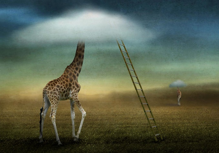 Beautiful and Dark Surreal Art (40 photos)