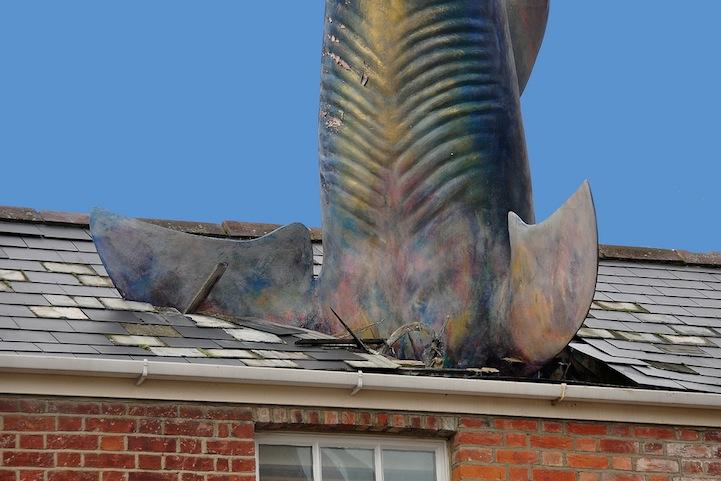 Surreal Shark Crashes Head First Through A House