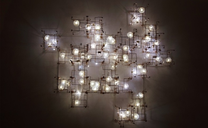 Real Dandelions Surround Led Lights In Unique Chandeliers