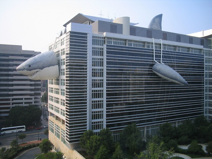 Discovery Channel's Awesome Shark Building (6 photos)