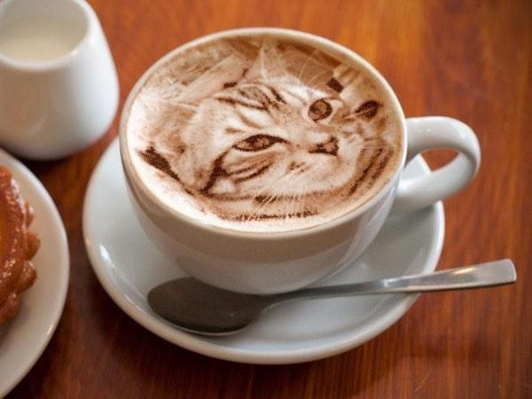 Prava umetnost u šoljici kafe! - Page 5 G3kFUy0NzFnHYRLbt7Ma_catlatte3