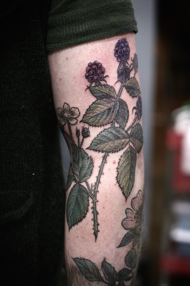 Exquisitely Beautiful Botanical Tattoos By Alice Carrier