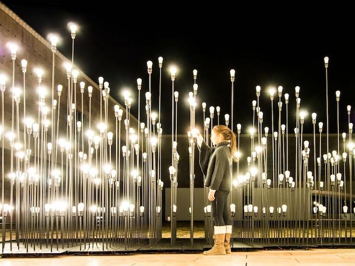 Magical Interactive Garden Made Led Lightbulbs