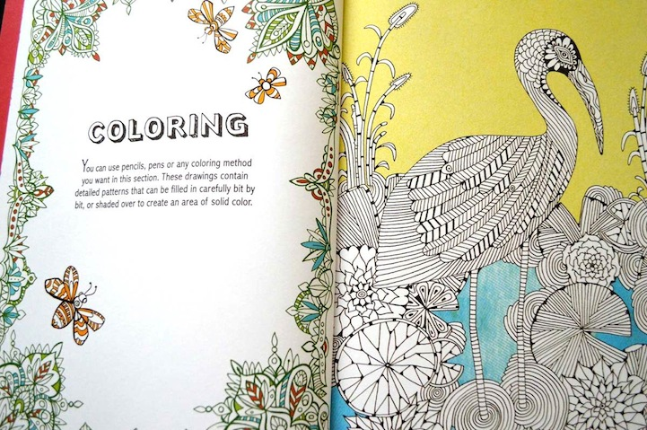 Anti Stress Coloring Book Offers Fun Creative Therapy For