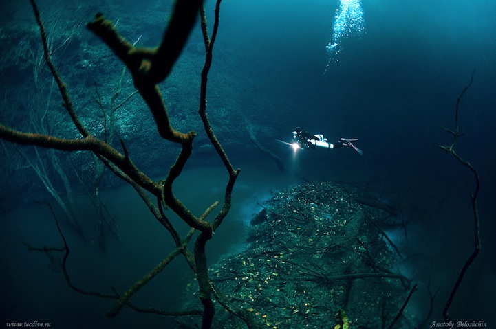 cenote angelita underwater river mexico nature underwater photography