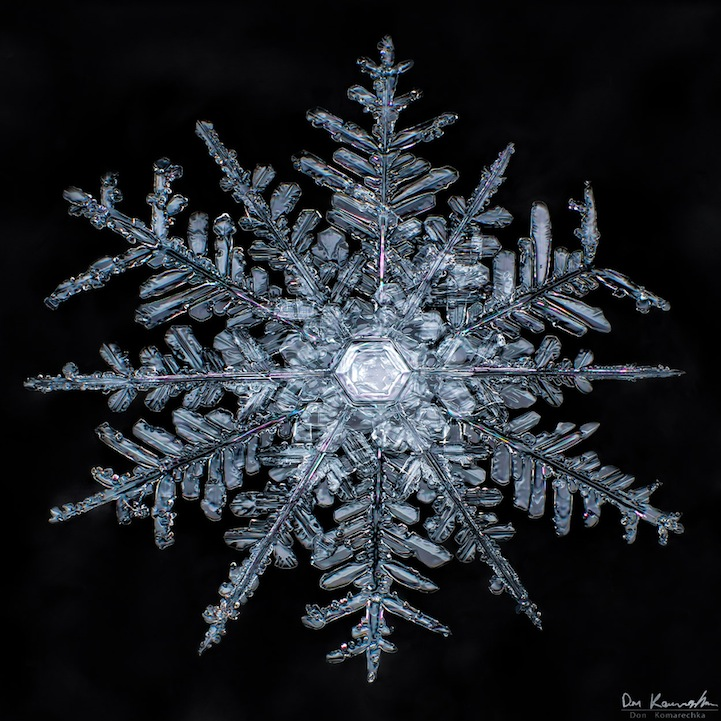 crystal clear snowflake photos by don komarechka