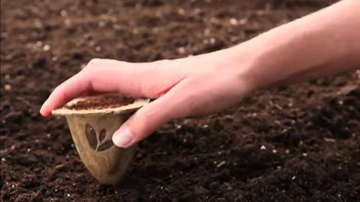 Biodegradable Seed Pods Make Growing a Garden Much Easier