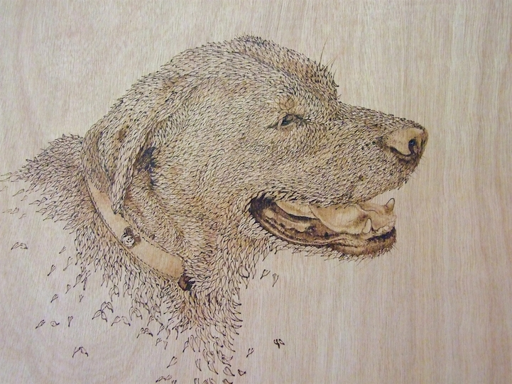 beautifully detailed drawings burnt into pieces of wood