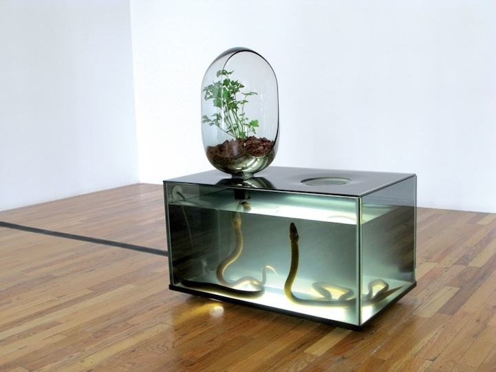 Amazing diy fish tank combined with gardening eco system for Diy river table