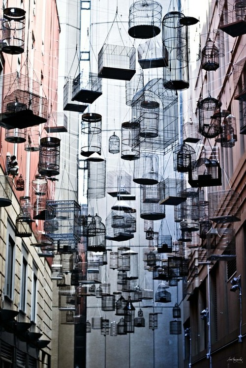 Step into a certain alleyway in Sydneyu0027s Angel Place and youu0027ll find a whimsical installation thatu0027s meant to be both seen and heard. & Sydneyu0027s Canopy of Birdcages Suspended in Mid-Air