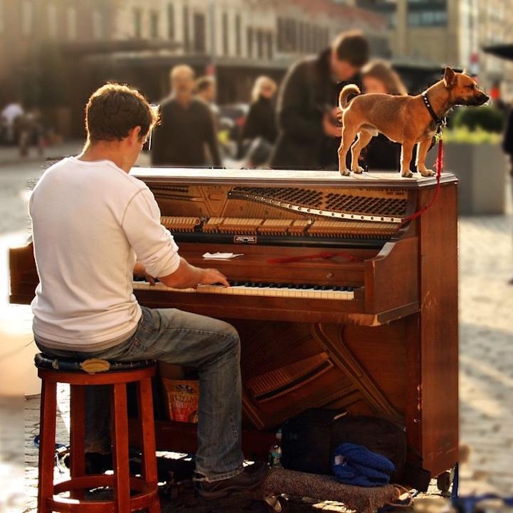 Gay piano players