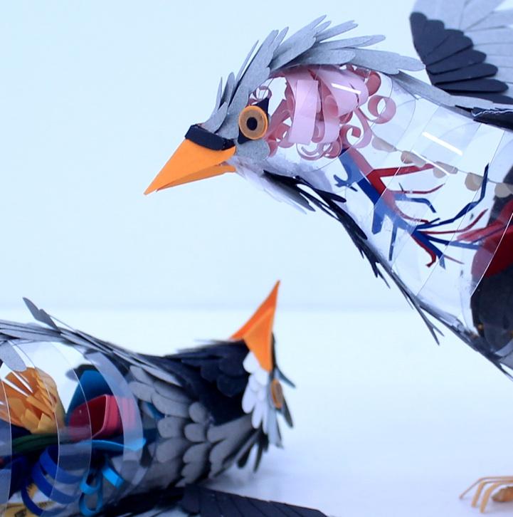 Amazing Paper Bird Sculptures Reveal Their Internal Anatomy